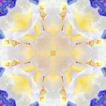 Raum, Reines Bewusstsein, Shiva, Heilung, Ausdehnung, Reinheit, Klarheit, Schwerelosigkeit Quintessenz, Äther, Leere